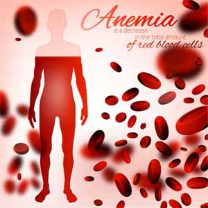 Recover From Anemia